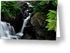 White Water Black Rocks Greeting Card