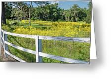 White Wood Fence And Wildflowers Greeting Card