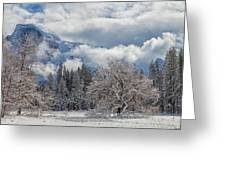 White Yosemite Greeting Card