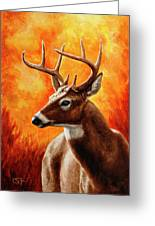 Whitetail Buck Portrait Greeting Card