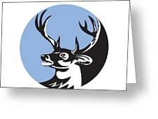 Whitetail Deer Buck Head Circle Retro Greeting Card