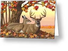 Whitetail Deer - Hilltop Retreat Greeting Card