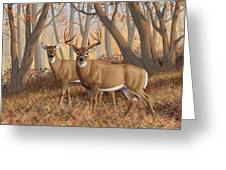Whitetail Deer Painting - Fall Flame Greeting Card by Crista Forest