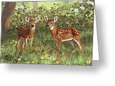 Whitetail Deer Twin Fawns Greeting Card by Crista Forest