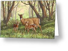 Whitetail Doe And Fawns - Mom's Little Spring Blossoms Greeting Card by Crista Forest