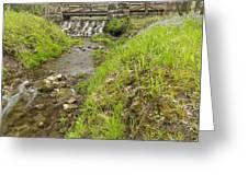 Whitewater Bridge And Dam Scene 13 Greeting Card
