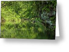 Whitewater River Scene 50 Greeting Card