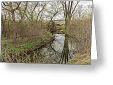 Whitewater River Spring 41 A Greeting Card