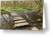 Whitewater River Spring 52 Greeting Card