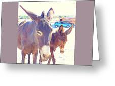 Who Wants A Blue Car When You Can Have Donkeys Greeting Card