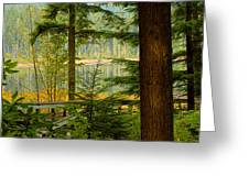 Whonnock Lake Through The Trees Greeting Card