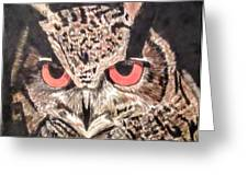 Whoot Owl Greeting Card