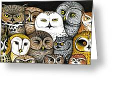Who's Hoo Greeting Card