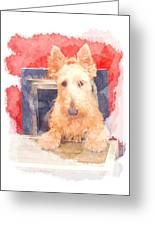 Whos That Dog In The Window? Greeting Card
