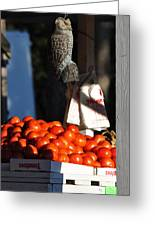 Who's Tomatoes Greeting Card