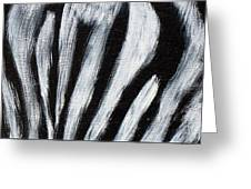 Whos Watching Who   Zebra Greeting Card