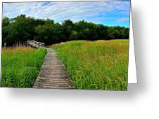 Wide Angle Landscape Greeting Card
