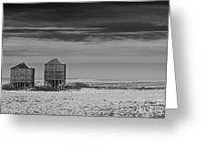 Wide Open... Greeting Card