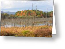 Wild Acres Greeting Card