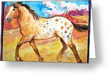 Wild Appaloosa Horse Greeting Card