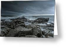 Wild Baltic Sea Greeting Card
