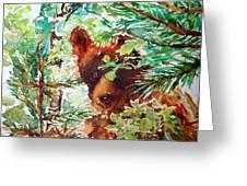Wild Bear Peek-a-boo Watercolour Greeting Card