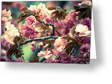 Wild Blossoms Greeting Card