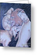 Wild Boar And Dogs Greeting Card