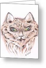 Wild- Brown Hair Cat Greeting Card