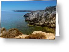 Wild Coast Cyprus Greeting Card