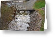 Wild Creek  Greeting Card