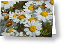 Wild Daisies II Greeting Card