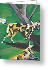Wild Dogs Greeting Card