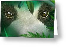 Wild Eyes - Giant Panda Greeting Card