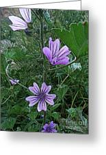 Wild Flowers 2 Greeting Card