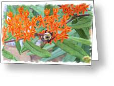 Wild Flowers And Bumble Bees Greeting Card