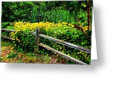 Wild Flowers And Fence Greeting Card