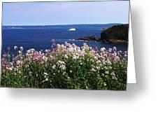 Wild Flowers And Iceberg Greeting Card