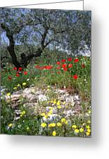 Wild Flowers And Olive Tree Greeting Card