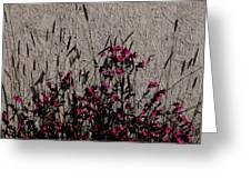 Wild Flowers On The Wall Greeting Card