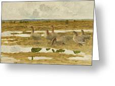 Wild Geese In The Marsh Greeting Card