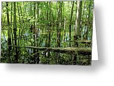 Wild Goose Woods Pond Iv Greeting Card