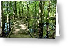 Wild Goose Woods Pond Vi Greeting Card
