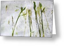 Wild Grass 2 Greeting Card