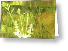 Wild Grass 7 Greeting Card