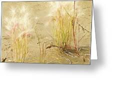 Wild Grasses Greeting Card