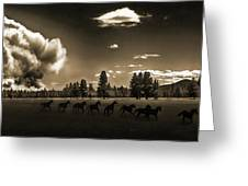 Wild Horse Fire, Sepia Greeting Card