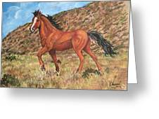 Wild Horse In Virginia City, Nevada Greeting Card