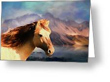 Wild Horse - Painting Greeting Card