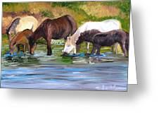 Wild Horses At The Watering Hole Greeting Card